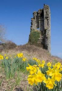 Doonbeg-castle-1