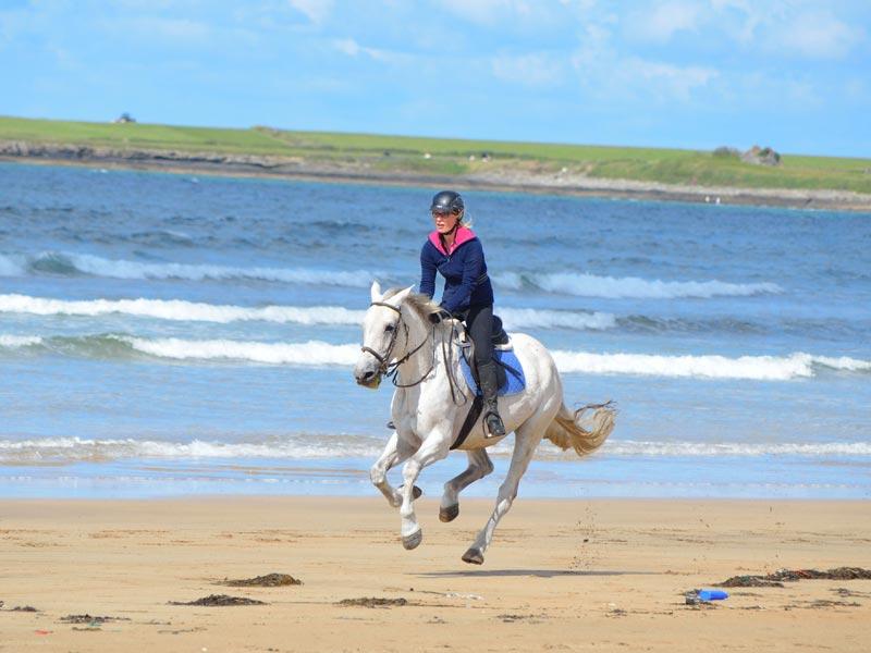 Pony Treking